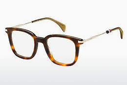 Gafas de diseño Tommy Hilfiger TH 1516 086 - Marrones, Havanna