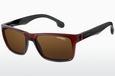 Gafas de visión Carrera CARRERA 8024/S 4IN/SP - Marrones